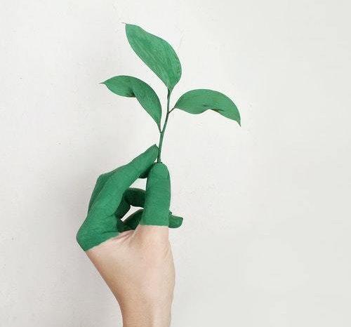 Passer du på miljøet?